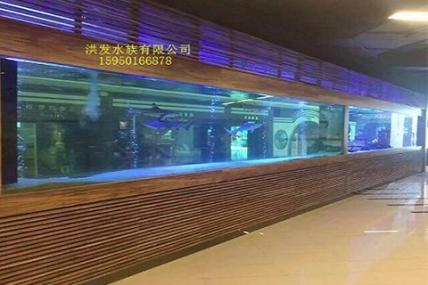 上海 西郊 12米鱼缸