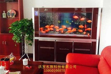 尚湖国际花园 李总家
