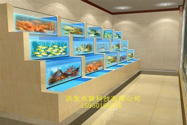 苏州酒店海鲜鱼缸
