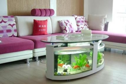 昆山龙鱼缸