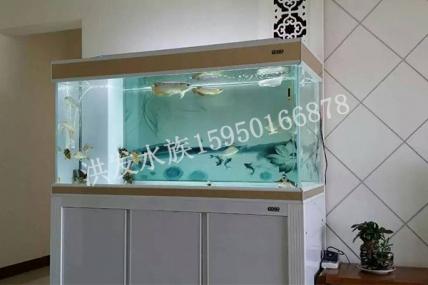 昆山定制鱼缸柜式